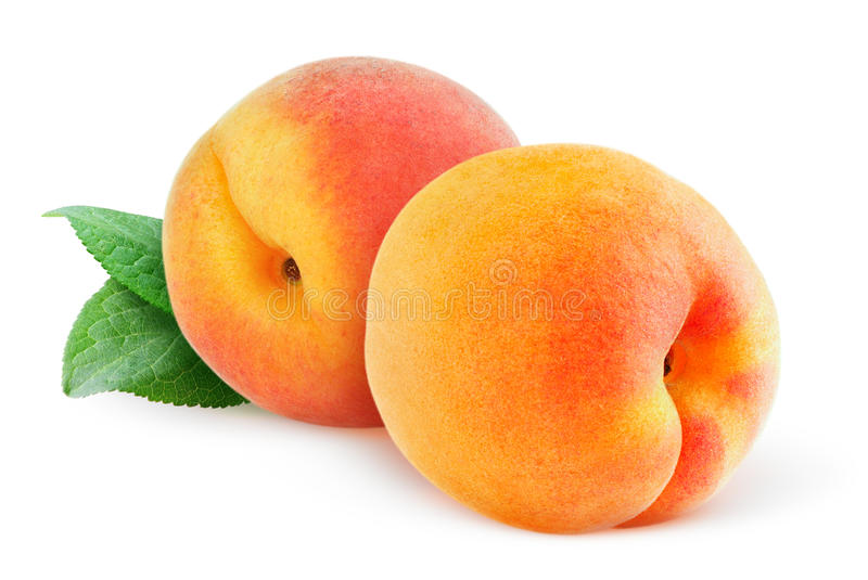 Isolerade persikor eller aprikors royaltyfri foto
