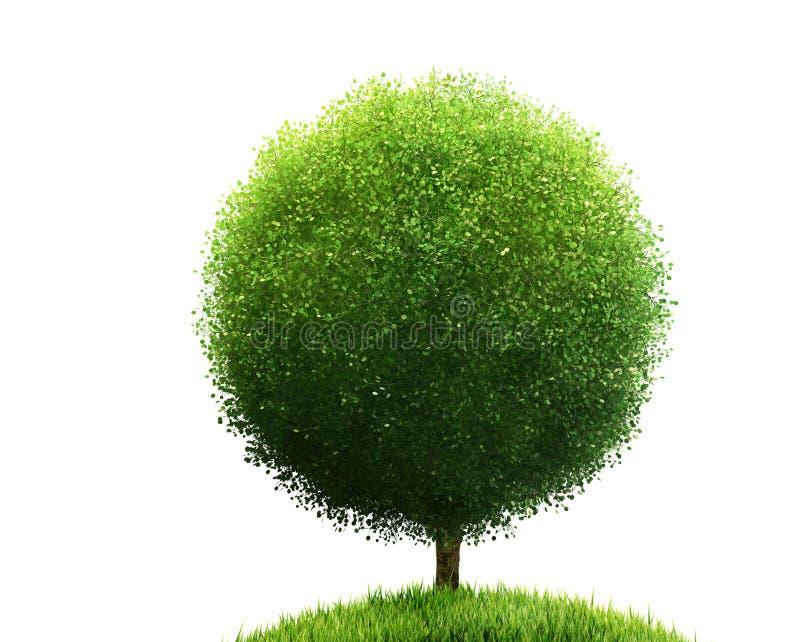 Isolerade träd och gräs royaltyfri foto