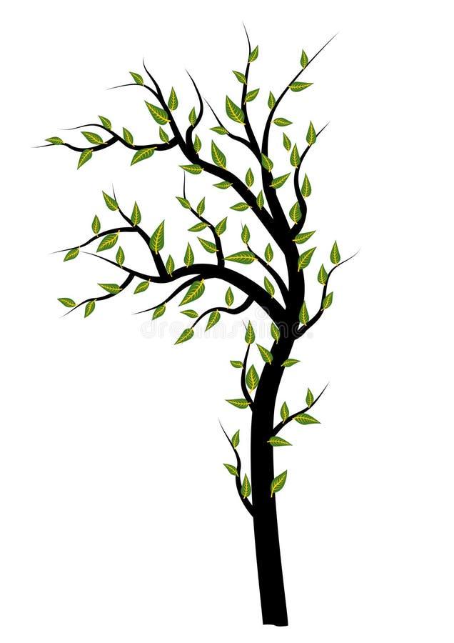 Isolerade trädillustrationer stock illustrationer