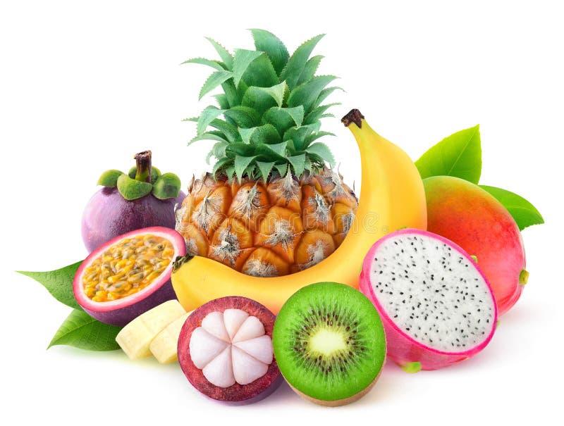 Isolerade tropiska frukter arkivbild