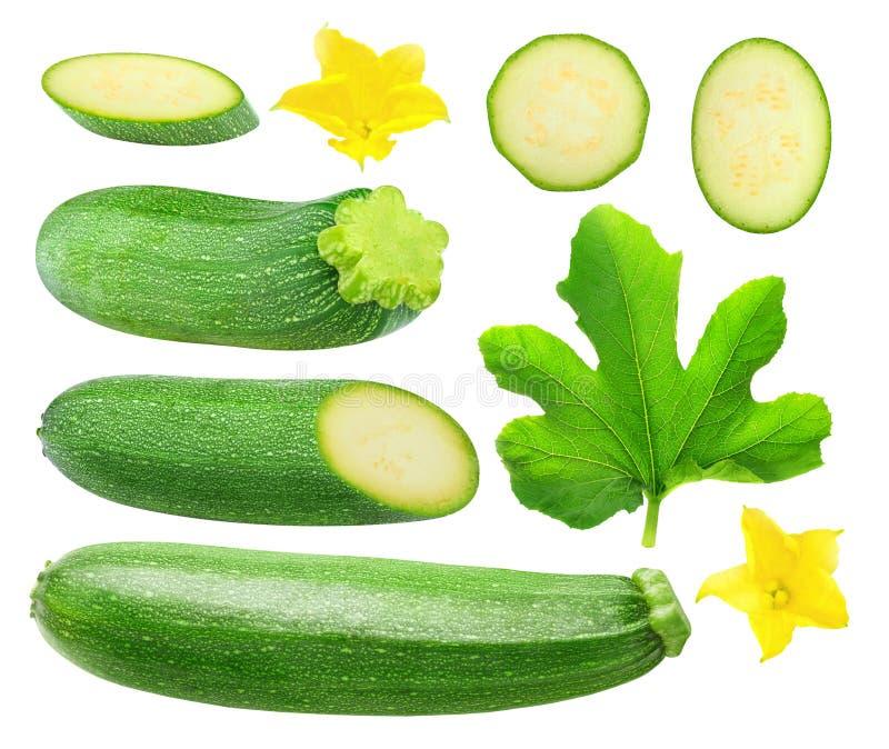 Isolerade zucchinistycken royaltyfri fotografi