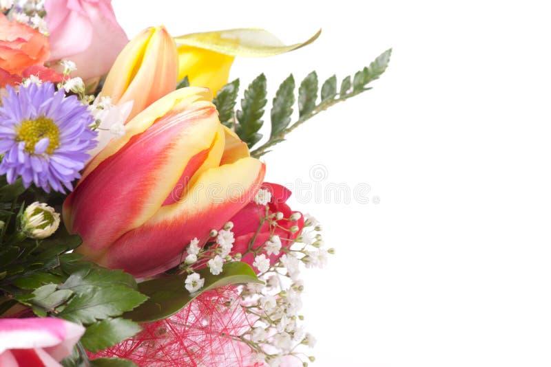 isolerat avstånd för gruppkopia blommor arkivfoton