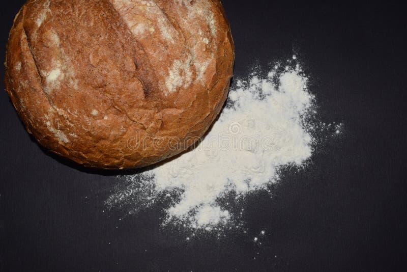 Isolerat brödmjöl royaltyfri foto