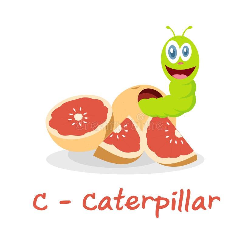 Isolerat djurt alfabet för ungarna, C för Caterpillar vektor illustrationer