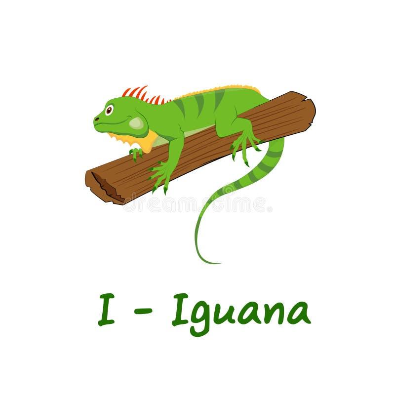 Isolerat djurt alfabet för ungarna, I för leguan stock illustrationer