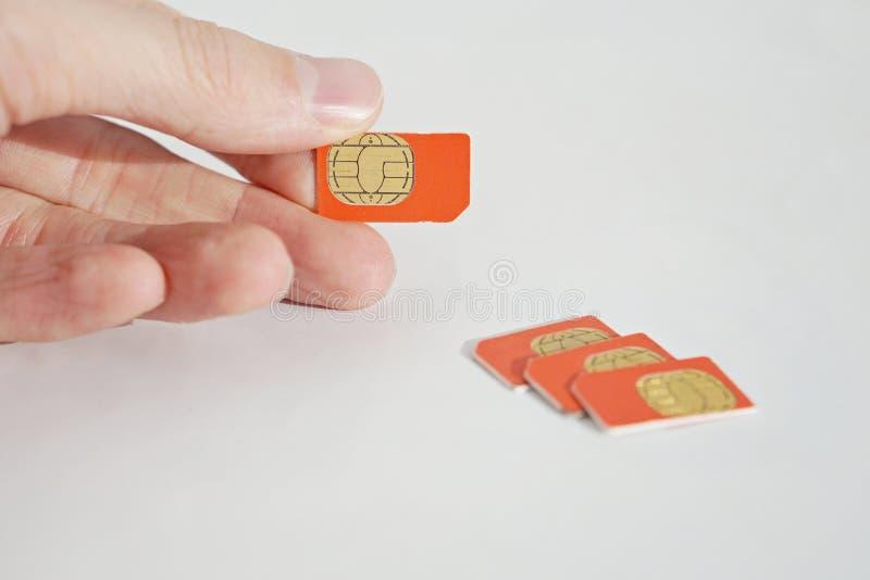 Isolerat foto av den manliga handen som rymmer det röda SIM-kortet royaltyfri fotografi