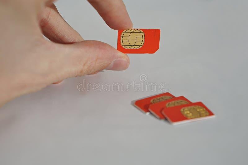 Isolerat foto av den manliga handen som rymmer det röda SIM-kortet royaltyfri bild