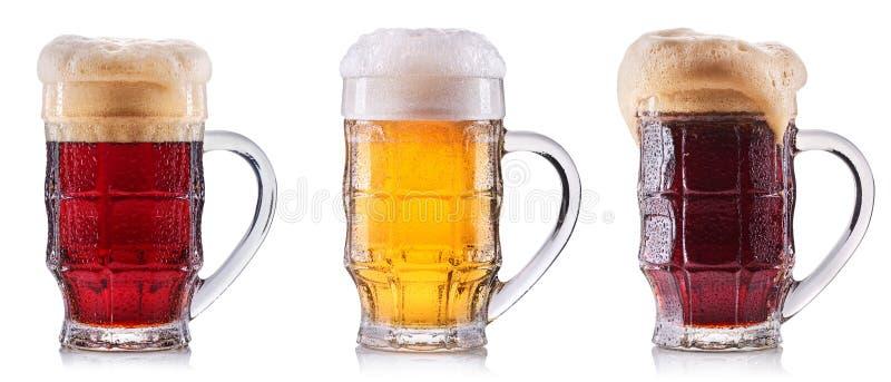 Isolerat frostigt exponeringsglas av öl fotografering för bildbyråer