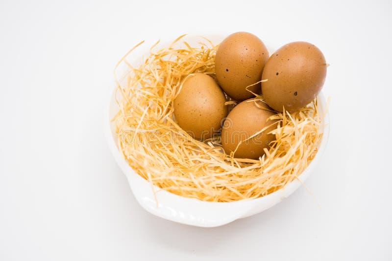 Isolerat fyra ägg med redet arkivbild