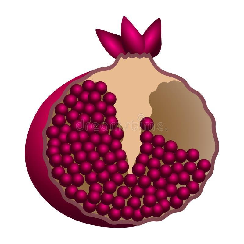 Isolerat granatäpplesnitt royaltyfri illustrationer