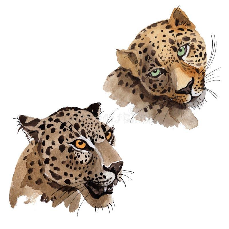 Isolerat löst djur för exotisk leopard i en vattenfärgstil vektor illustrationer