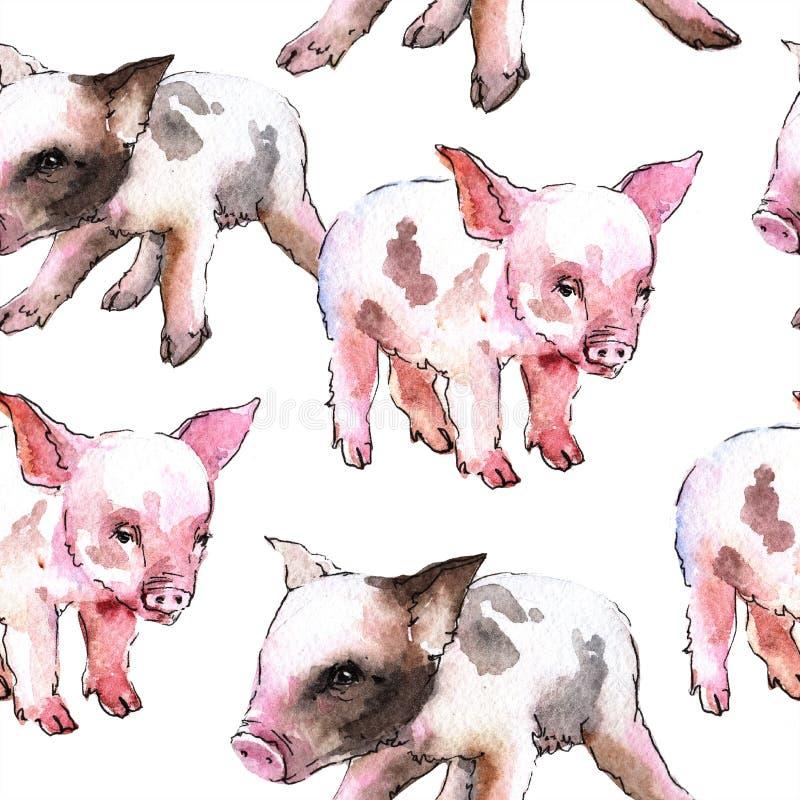 Isolerat löst djur för rosa svin i en vattenfärgstil Seamless bakgrund mönstrar vektor illustrationer