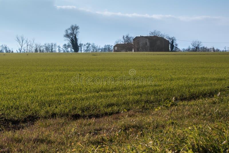 Isolerat lantbrukarhem, grön äng, träd i bygd och blått arkivfoto