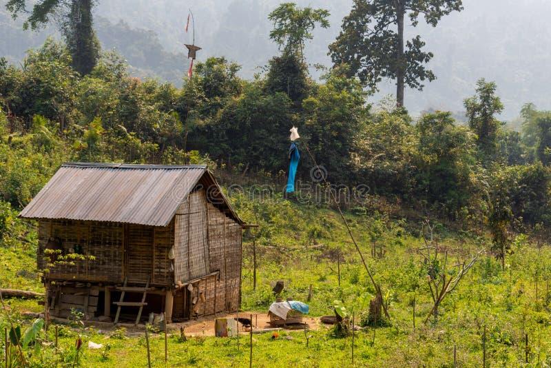 Isolerat lantligt hus i Laos royaltyfria foton