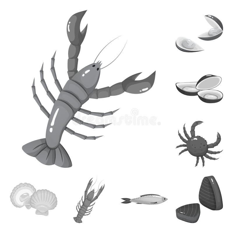 Isolerat objekt av den havs- och sunda logoen Samling av skaldjur- och havmaterielsymbolet f?r reng?ringsduk royaltyfri illustrationer