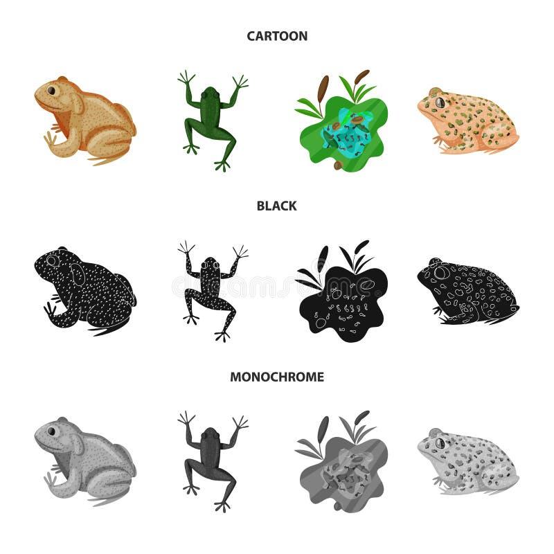 Isolerat objekt av djurliv- och myrsymbolen Samling av djurliv- och reptilmaterielsymbolet f?r reng?ringsduk stock illustrationer