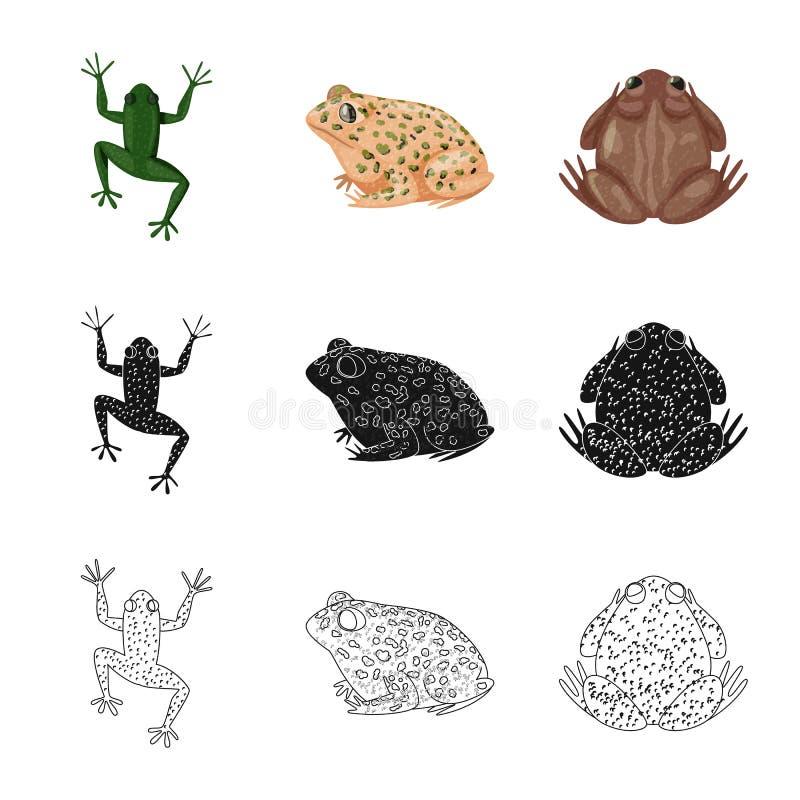 Isolerat objekt av djurliv- och myrsymbolet St?ll in av illustration f?r djurliv- och reptilmaterielvektor royaltyfri illustrationer