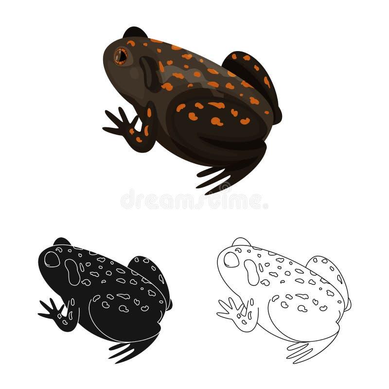 Isolerat objekt av paddan och den tropiska symbolen r stock illustrationer