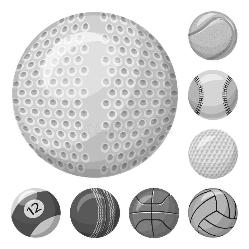 Isolerat objekt av sport- och bollsymbolet Samling av sporten och den idrotts- materielvektorillustrationen vektor illustrationer