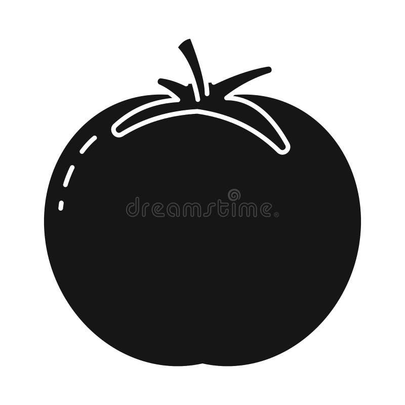 Isolerat objekt av tomaten och den runda symbolen Ställ in av tomaten, och saftigt lagerföra symbolet för rengöringsduk vektor illustrationer