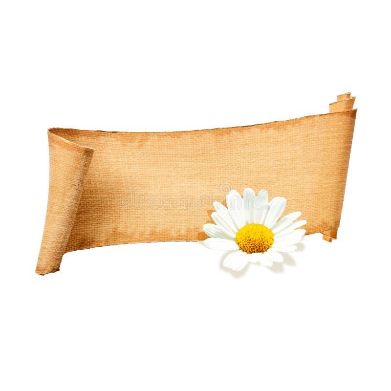 isolerat papper för baner blomma royaltyfri fotografi