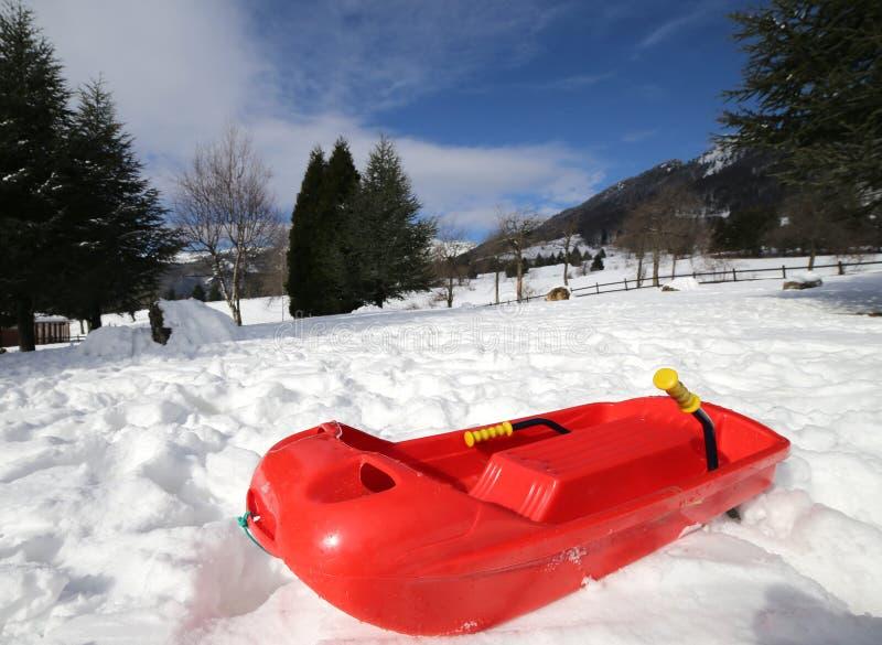Isolerat rött guppar för att spela i snön royaltyfri fotografi