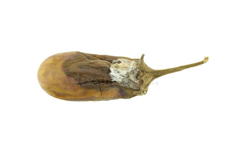 Isolerat ruttet för aubergine royaltyfria foton
