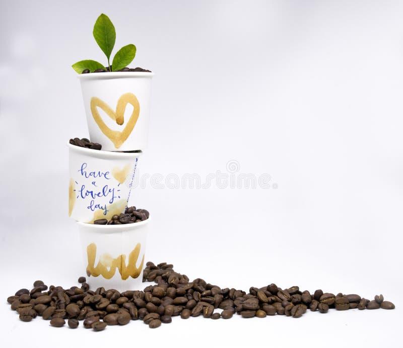 Isolerat tre takeaway pappers- kopp för vitt kaffe som staplas upp, har H royaltyfri fotografi