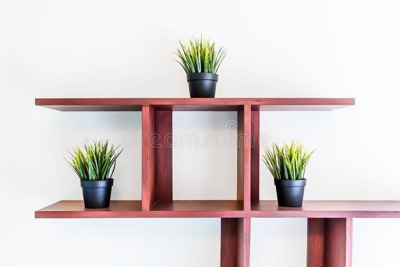 Isolerat tre växter på hyllan arkivfoto