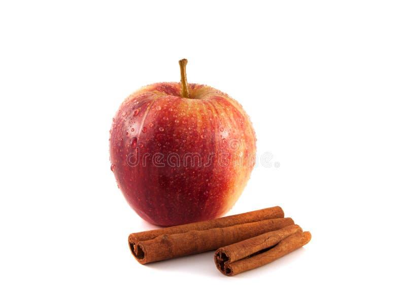 Isolerat vått rött äpple med kanel på en vit royaltyfri bild