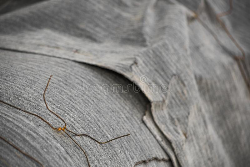 Isolering för värmerör som vrids med rostig tråd arkivfoto
