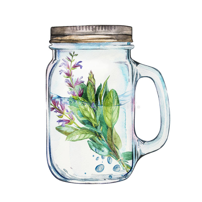 Isoleted Tumbler with stainless steel lid and a sage branch inside. Watercolor hand drawn painted illustration. Isoleted Tumbler with a sage branch inside stock illustration