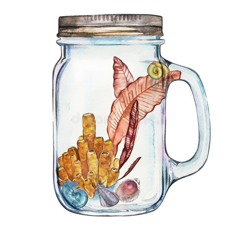 Isoleted Tumbler z Morskiego życia krajobrazem ocean i podwodny świat z różnymi mieszkanami - Akwarium ilustracja wektor