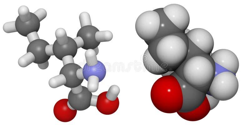 Isoleucina (Ile, I) molecola illustrazione di stock