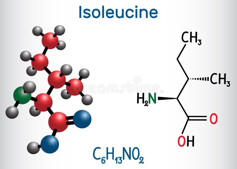 Isoleucina l isoleucina, Ile, molécula del aminoácido de I Se utiliza en la biosíntesis de proteínas fórmula química estructural stock de ilustración
