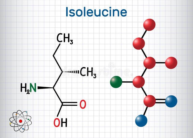 Isoleucina l isoleucina, Ile, molécula del aminoácido de I Se utiliza en la biosíntesis de proteínas Hoja de papel en una jaula stock de ilustración