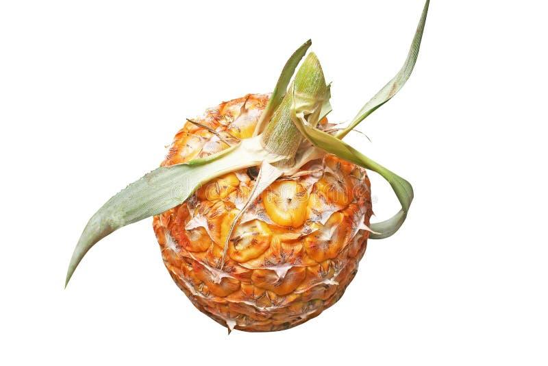 Isolou o abacaxi fresco, Ásia imagens de stock royalty free