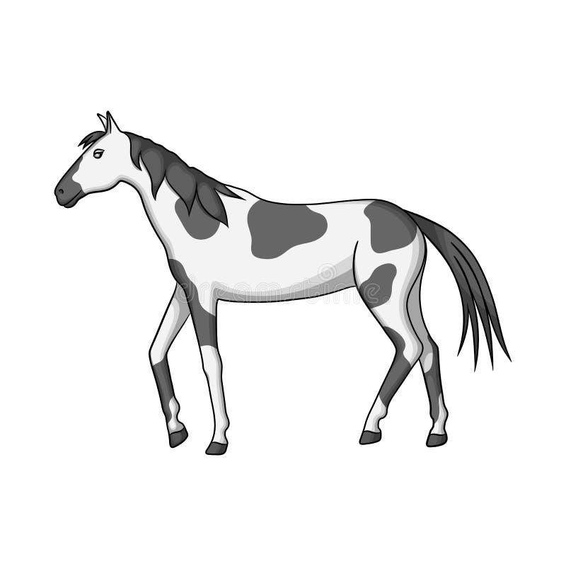 Isolou o objeto do cavalo e dapple o símbolo Ajuste do cavalo e do ícone do vetor da fauna para o estoque ilustração royalty free
