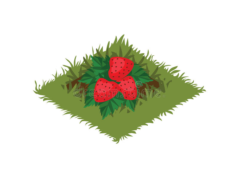 Isometric κρεβάτι κήπων φρούτων κινούμενων σχεδίων που φυτεύεται με τη φράουλα Μπους - στοιχεία για το χάρτη Tileset ελεύθερη απεικόνιση δικαιώματος
