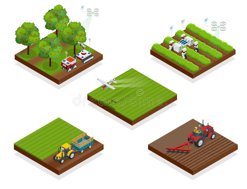 Isometric agriculture automatic guided robots harvest fruit from trees and harvest berries, combined harvester-thresher. In the field royalty free illustration