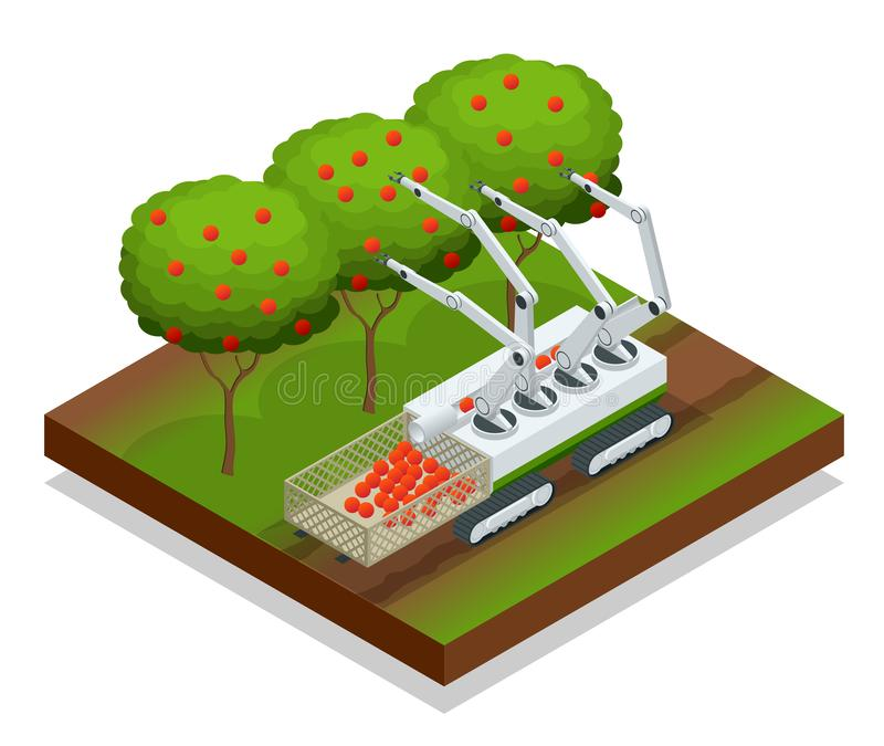 Isometric automatic guided robots harvest fruit from trees. Agricultural machinery robots mechanical arm working royalty free illustration