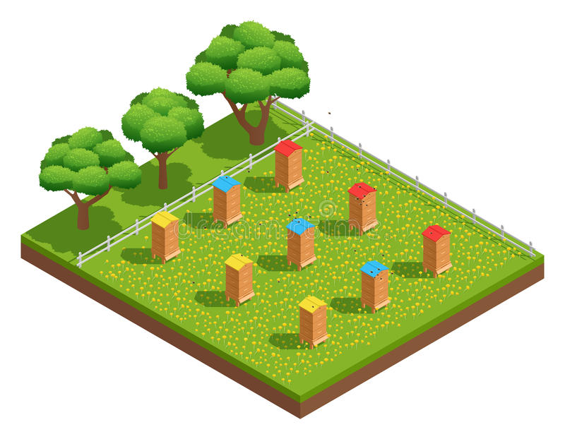 Isometric Composition Of Beekeeping Apiary. Beekeeping apiary with wooden hives on grass with flowers near trees isometric composition vector illustration stock illustration