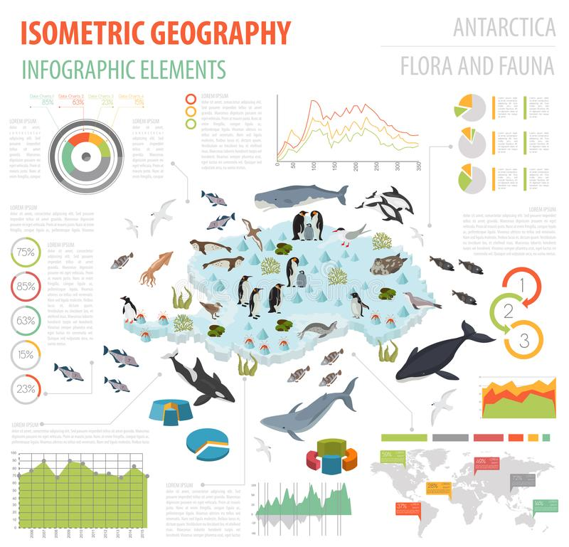 Isometric 3d Antarctica flora and fauna map elements. Animals, b. Irds and sea life. Build your own geography infographics collection. Vector illustration stock illustration