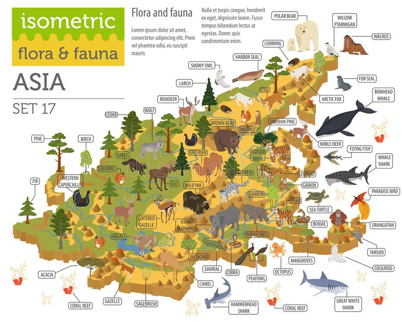 Isometric 3d Asian flora and fauna map constructor elements. Animals, birds and sea life isolated on white big set. Build your ow. N geography infographics vector illustration