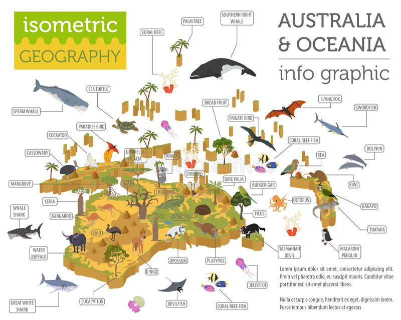 Isometric 3d Australia and Oceania flora and fauna map elements. Animals, birds and sea life. Build your own geography infographics collection. Vector vector illustration