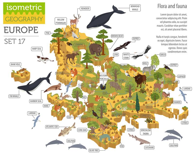 Isometric 3d European flora and fauna map constructor elements. Animals, birds and sea life on white big set. Build your own geography infographics collection royalty free illustration