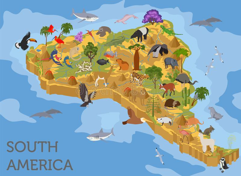 Isometric 3d South America flora and fauna map elements. Animals. Birds and sea life. Build your own geography infographics collection. Vector illustration royalty free illustration