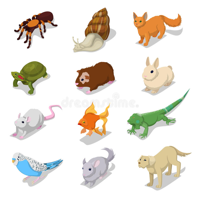 Isometric Domestic Animals Pets with Cat, Dog, Hamster and Rabbit. Vector 3d flat illustration royalty free illustration