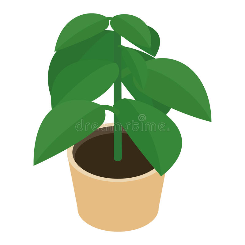 Isometric flower in a pot royalty free illustration