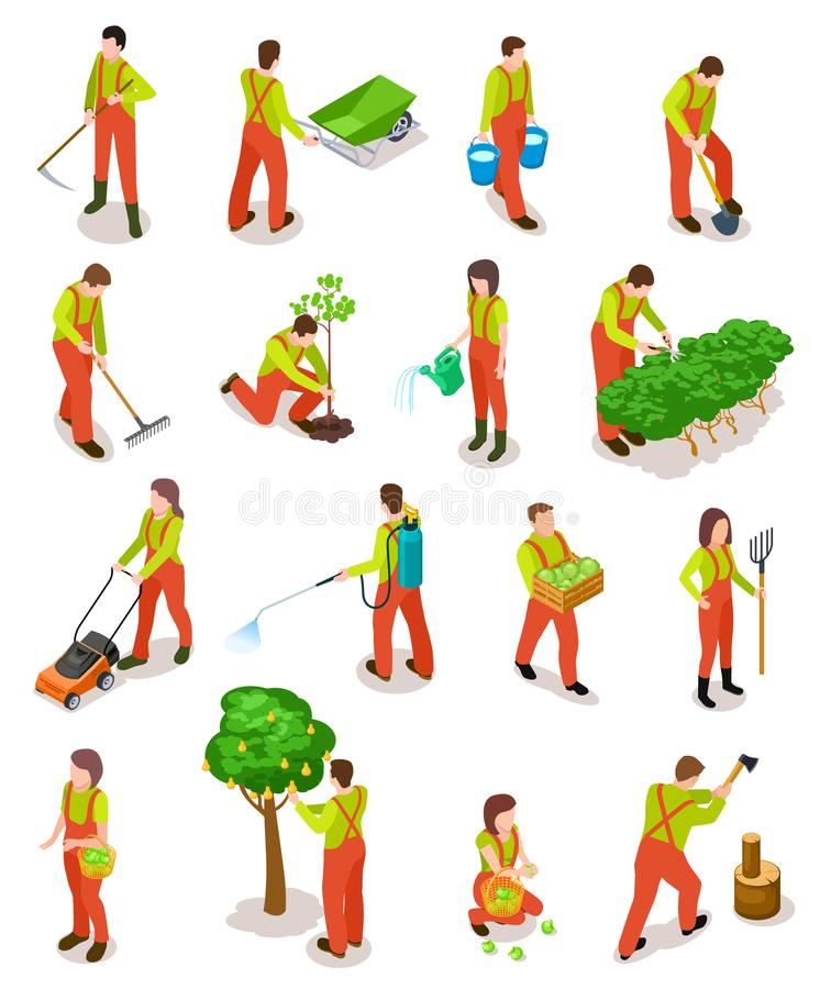 Isometric gardeners. Farmers work in garden. People in farming rural scene with trees and plants. 3d vector characters royalty free illustration